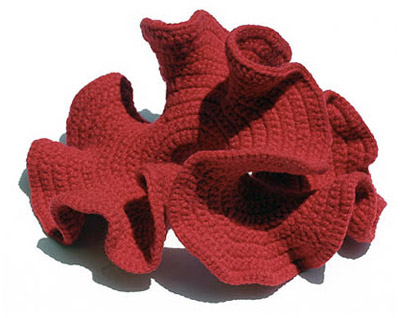 CROCHETING THE HYPERBOLIC PLANEby Daina Taimina and David Henderson